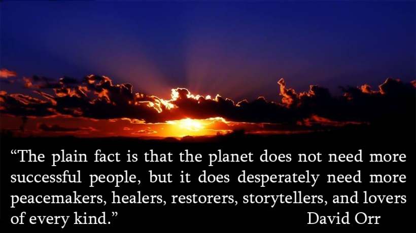 david-orr_the-plain-fact-is-that-the-planet-does-not-need-more-successful-people1.png